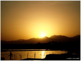 Sunset Egypt by nnIKOO
