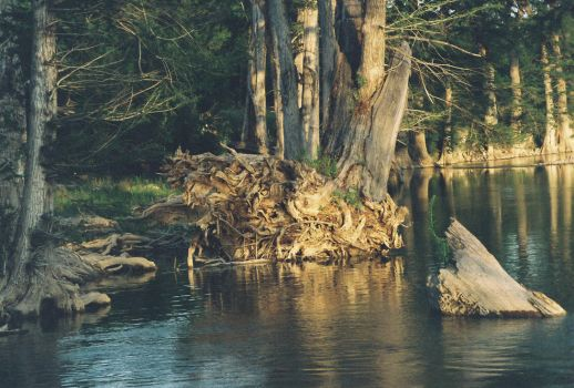 Guadalupe River Take 3 by cherokeecowgirl