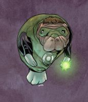 Green Lantern Manatee by jharris
