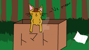 Box of Tomatoes kitty by Ask--Lightningpelt