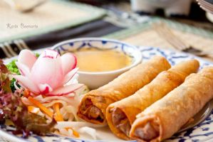 Spring Rolls by SoulofNovember