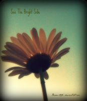 See The Bright Side by capitolesque