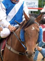 Boxing Day Picnic Races by Barana