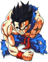 GOHAN IS HURT by trunks24