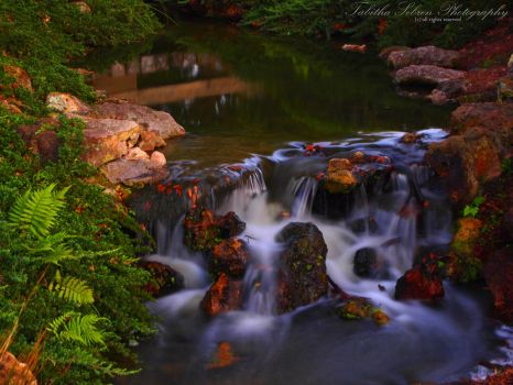 Heaven's Waterfall by TabithaS-Photography