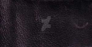 Texture - leather1 by DameOdessaStock