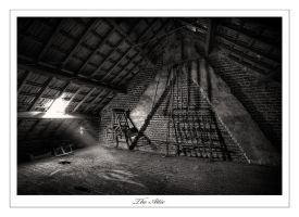 The Attic by DimitriKING