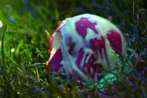 . Poison Apple . by KimberleePhotography