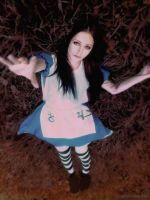 Alice Madness Returns by Axilirator