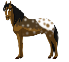 Stallion adopt 20 CLOSED by petshop101