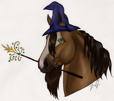 Wise Old Wizard-Contest Entry by jinxedxD