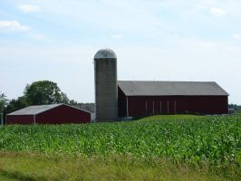 Wisconsin Dairyland Farm 4 by FantasyStock