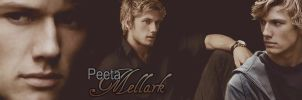 Hunger Games Peeta by Leesa-M