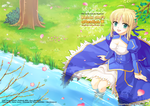 Fate Illustbook Cover/Saber by Trianon-dfc