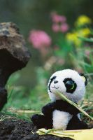 A Picnic With Mr. Panda by HerbstHayabusa