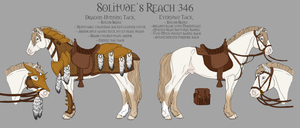 Solitude's Reach 346 Armor and Tack by ReaWolf