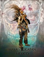 THE  MAYA WARRIOR OF MEXICO by lawrencebydesign