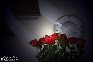 Roses by ANTHONY1314