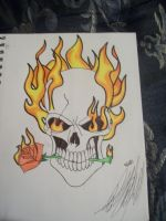 Skull on Fire by SarahHardy01