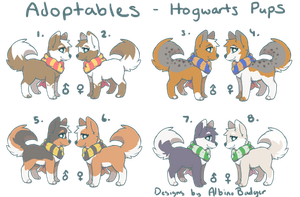CLOSED Adopts-  25 POINT Hogwarts Pups by AlbinoBadger