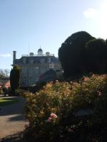 Kingston Lacey by child-of-aros
