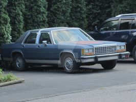 Ford LTD Crown Victoria 2 by canona2200