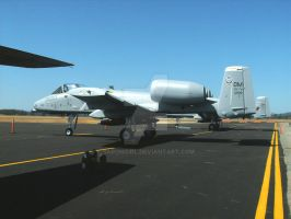 Airshow 2009 2 by BaronGirl