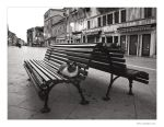 Cat on a Bench by welder