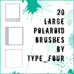 20 large size polaroid brushes by withmycamera