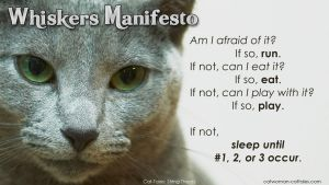 Whiskers Manifesto by chrisdee