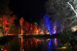 Enchanted Forest 2 by kilted1ecosse