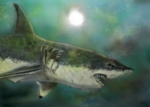 Airbrush 55 gt white shark by hofku43