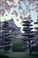 Japan - Castle --clean-- by NicoFX