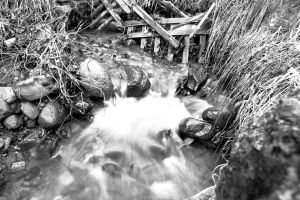 #Print #blackandwhite #water by Coquin