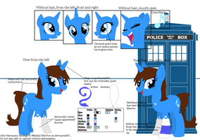 Official Reference Sheet - Ally Harmony (BG) by Melody-The-Fox