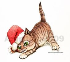 Christmas Kitten by Amritha