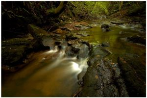 Hayburn Beck by didjerama