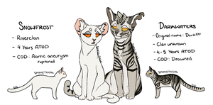 Dark Forest Cats Ref by Sinful-Souls
