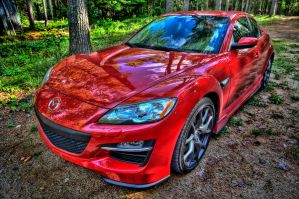 Cottage RX8 by Infinet