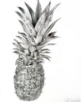 Pineapple Drawing by Rollingboxes