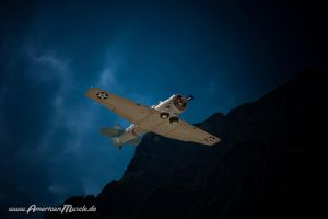 Flight by AmericanMuscle