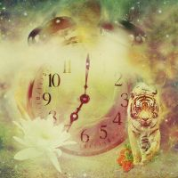 Time and Space by sylview