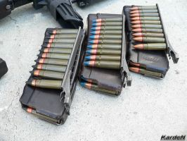 """AS""""Val"""" SP-5, SP-6 ammo by Garr1971"""
