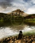 The lonely crow by CindysArt