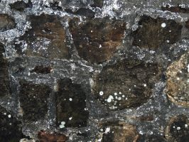 Stone Texture 4 by frisbystock