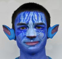 Avatar face painting by Rollingboxes