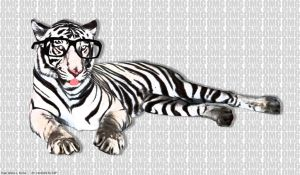 ZOMG Tiger by surlana