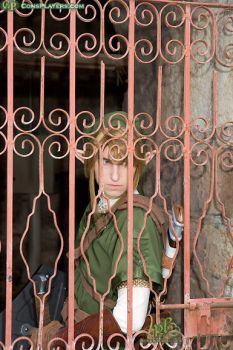 Twilight Princess Link by LiKovacs