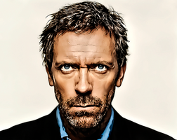 Gregory House 2 by donvito62