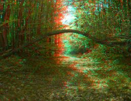 The Crooked Branch 3D anaglyph by yellowishhaze